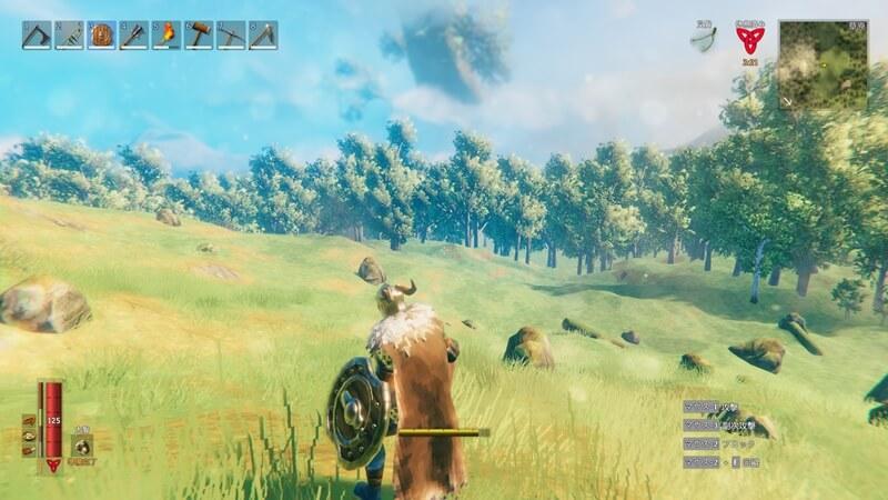 VALHEIMの草原